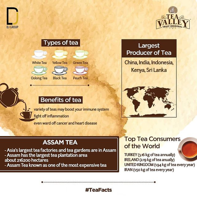 assam truly tea valley